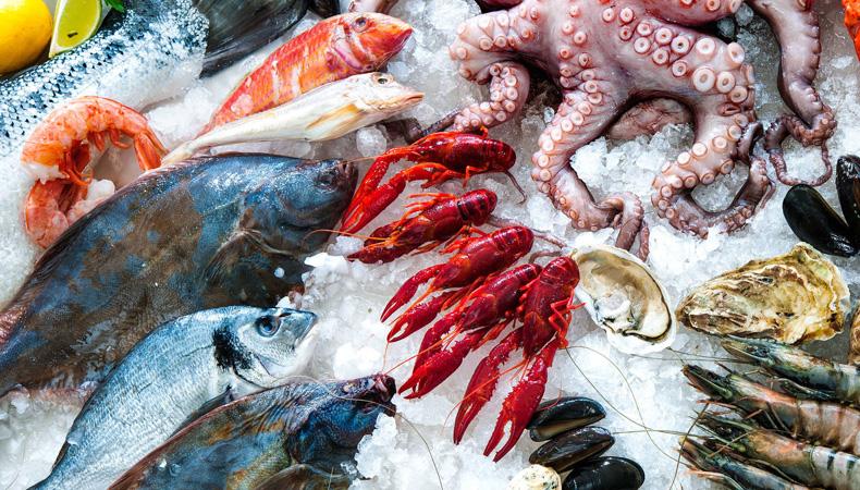 ¿Por Qué Debemos Consumir Productos Del Mar?